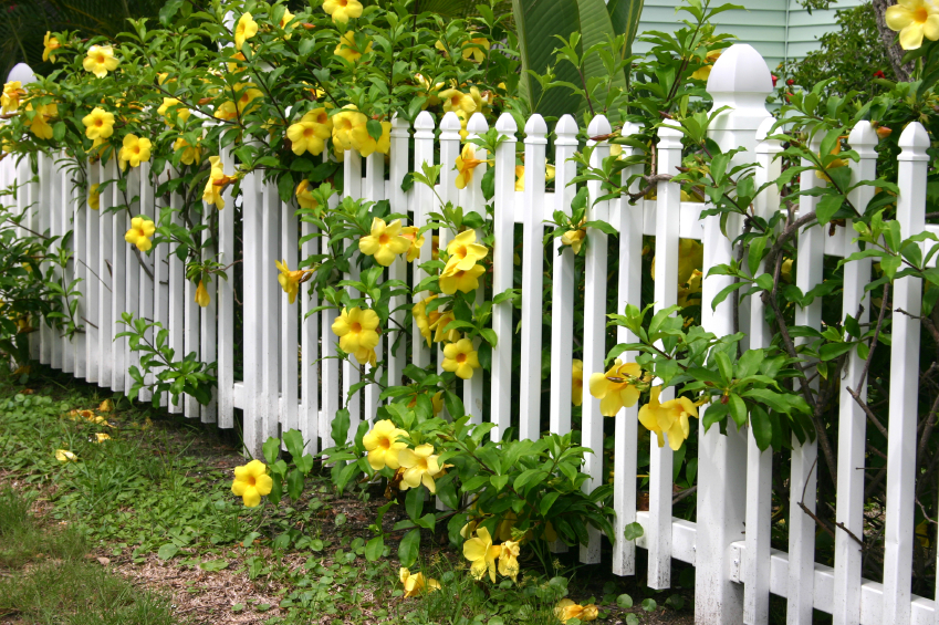 PVC White Picket Fencing PVC Fencing Garden PVC Picket Fences ...